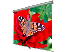 Экран настенный Walfix SNM-4, диагональ:: 120